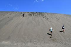auckland-hike-lake-wainamu-got-to-get-out-12
