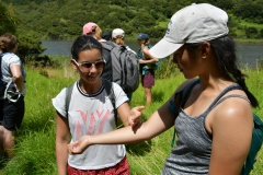get-into-nature-new-zealand-auckland-hiking-tree-planting-got-to-get-out-1