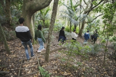 get-into-nature-new-zealand-auckland-hiking-tree-planting-got-to-get-out-12