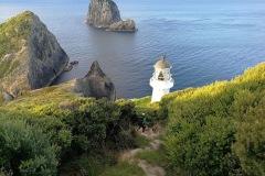 great-barrier-island-hike-new-zealand-2