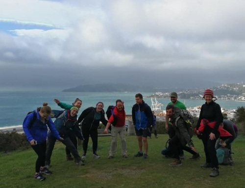 5 Reasons to Get Outdoors in Wellington