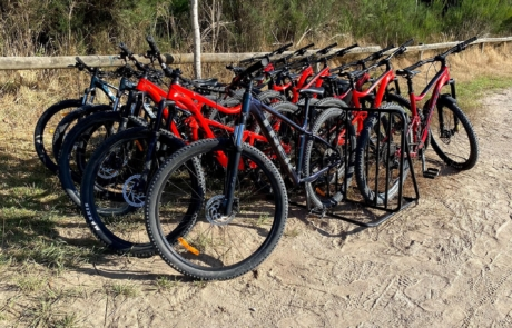 Fleet of Giant and Trek mountain bikes from Got To Get Out